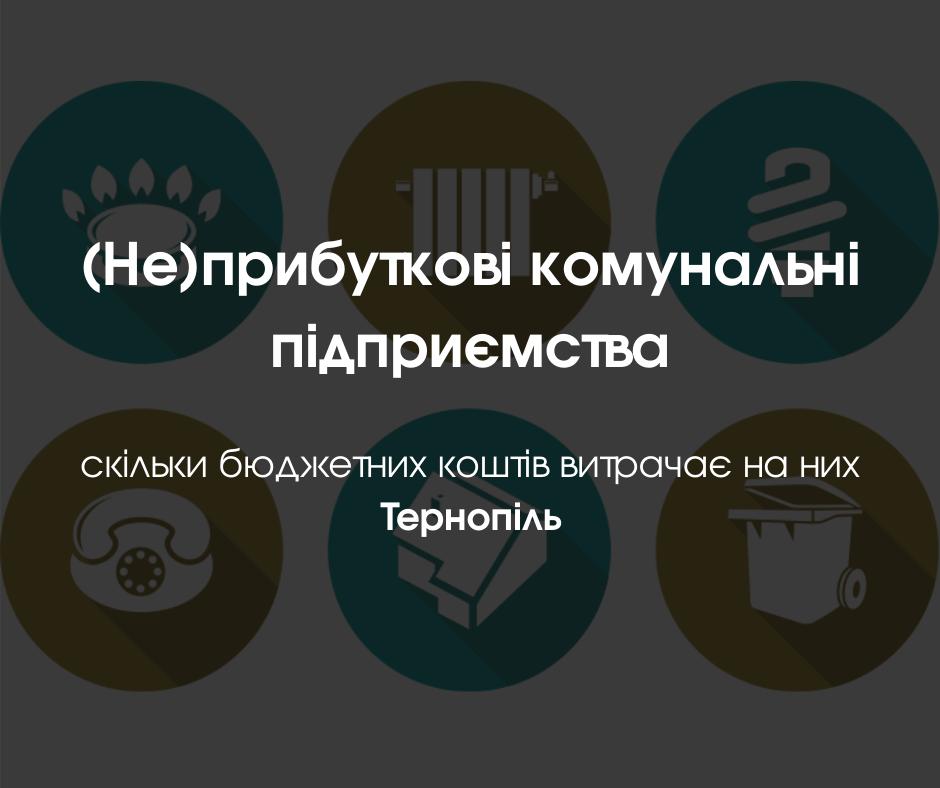 (Не)прибуткові комунальні підприємства – скільки бюджетних коштів витрачає на них Тернопіль
