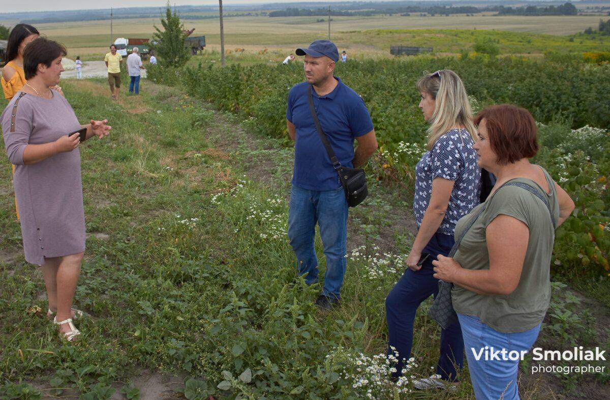 Оксана Пасєка: «Навіщо їхати за кордон, якщо можна непогано заробляти вдома на малині й кропиві?»
